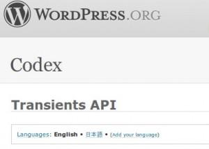 Wordpress Transients API